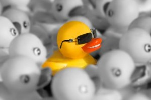 Duck_shades_standout-570x200